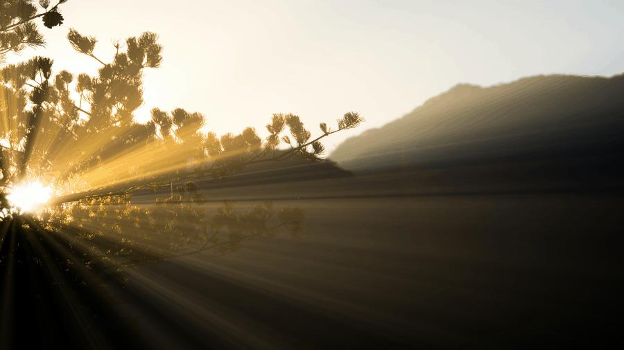 Light Shining Through Tree Branch With Mountain 900x506