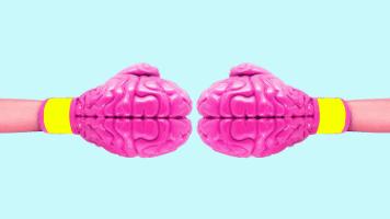 Brain VS Brain 356x200
