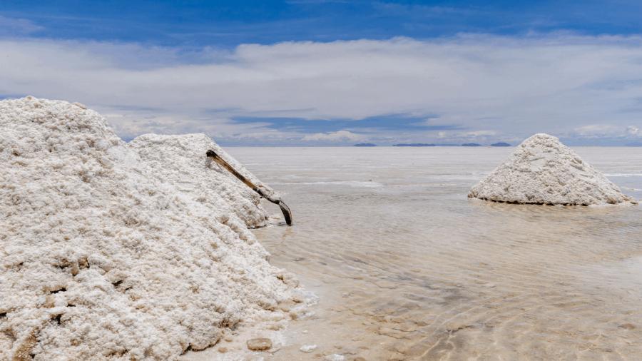 Salt Harvest 900x506