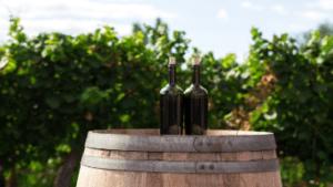 Two Wine Bottles On Barrel Winery 356x200