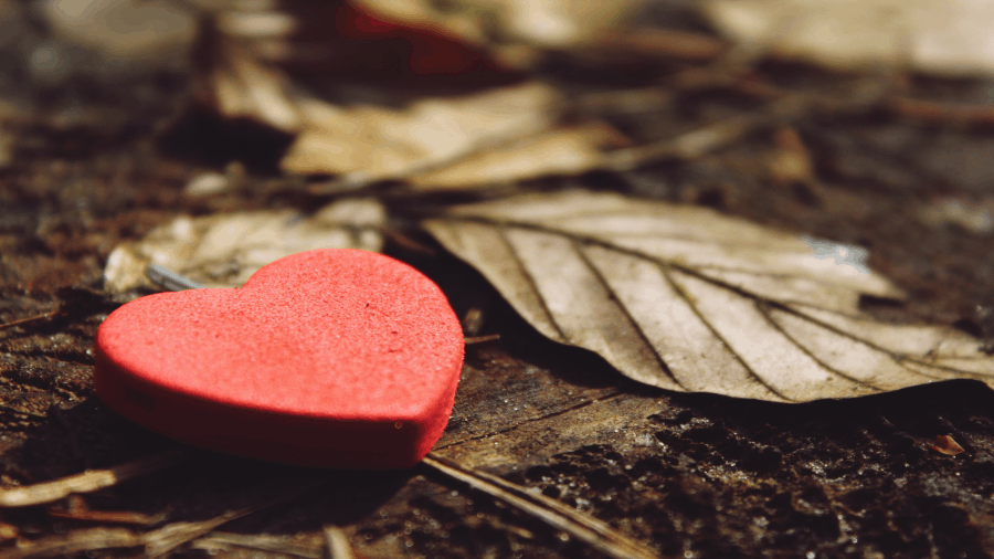 Red Heart On Wood And Table 900x506